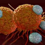 سرطان چگونه به وجود می آید